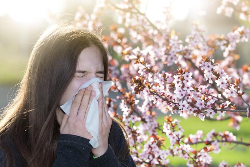 Antiallergika, Allergie-Mittel