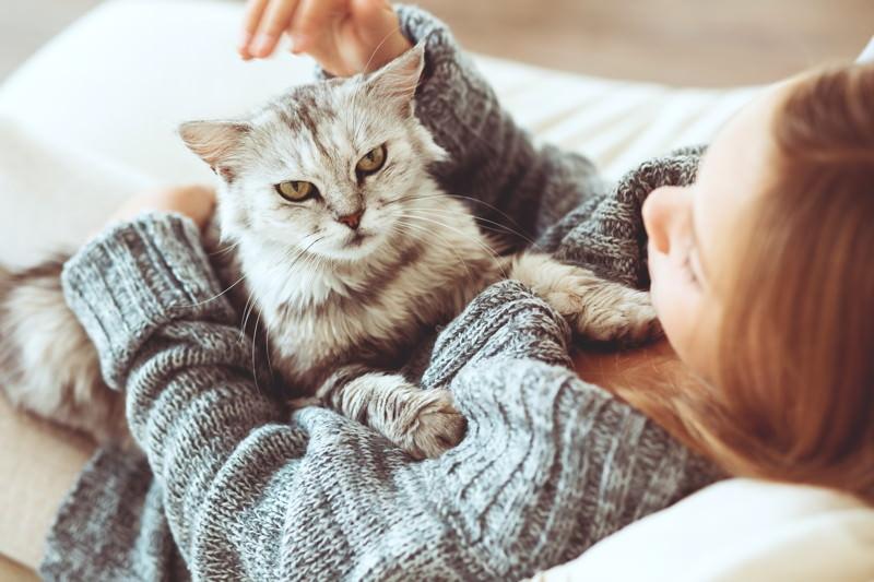 Tierhaarallergie und Tierallergie